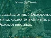 A csodálatos erejű Oroszlánkapu Portál augusztus 8-án nyílik meg Oroszlán újholddal